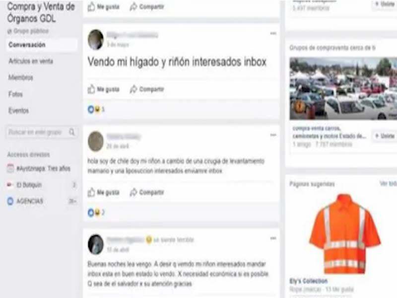 Detectan Grupo Compra Y Venta De Rganos En Guadalajara